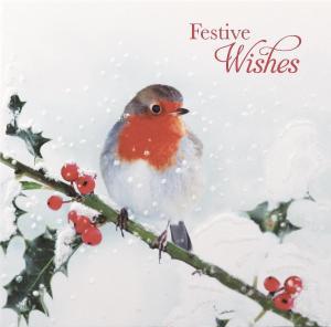 Robin Christmas