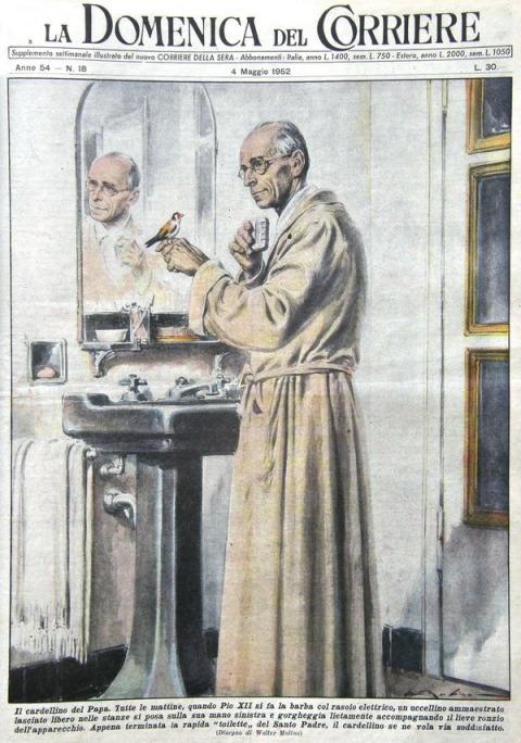 """""""Tutte le mattine, quando Pio XII si fa la barba col rasoio elettricl, un uccellino ammaestrato lasciato libero nelle stanze si posa sulla sua mano sinistra e gorgheggia lietamente accompagnando il lieve ronzio dell'apparecchio. Appena terminata la rapida """"toilette"""" del Santo Padre, il cardellino se ne vola via soddisfatto. Illustrazione di Walter Molino per la """"Domenica del Corriere"""" (n. 18/1952); fare click per visualizzare un'immagine più grande."""