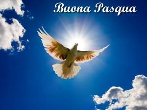 auguri-buona-pasqua-2015-2-300x225