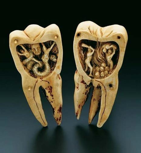 toothworm